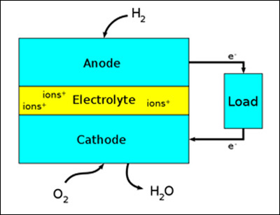 Basic Fuel Cell